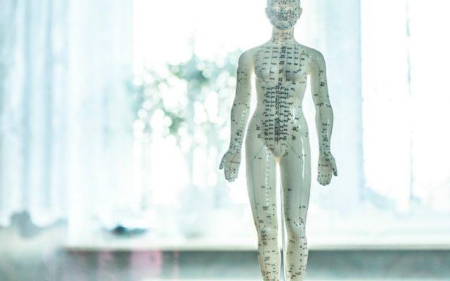 Osteopati Skanderborg